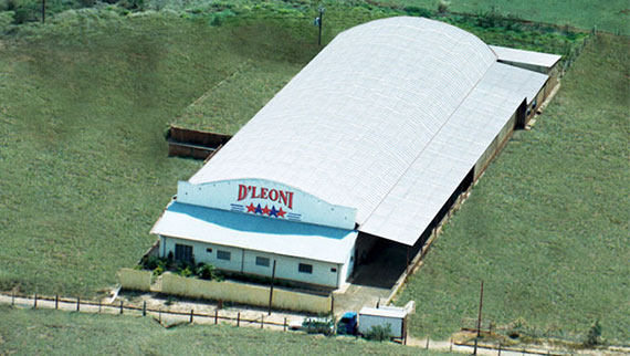 Deleoni - Pallets e Embalagens